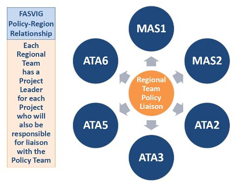 FASVIG Regional Team relationship with Policy Teams